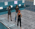 Educators Collaborating in Second Life